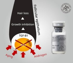 AAPE - Follicular epithelium